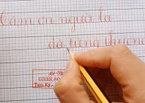 Đề thi viết chữ đẹp lớp 4
